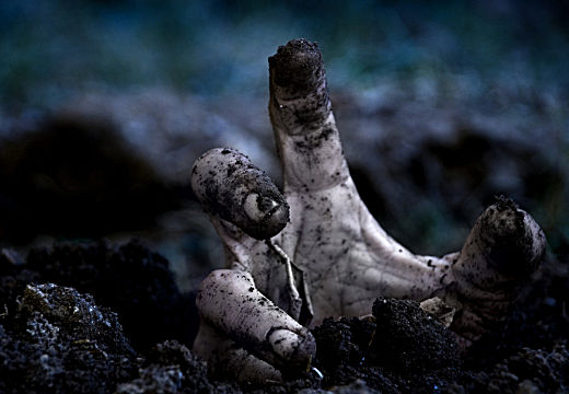 zombie hand reaching up from the dirt