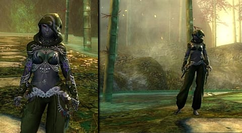 Vote on the Top 10 GW2 Fashion Finalists: Best Overall