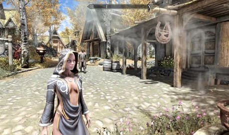NSFW Skyrim Mods: A Look at the Limited Options Available on
