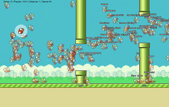 Flappy bird betting online betting astrology predictions