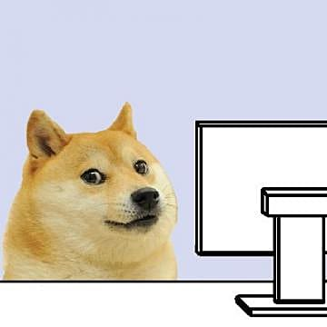 The Truth About The Doge Memes Face