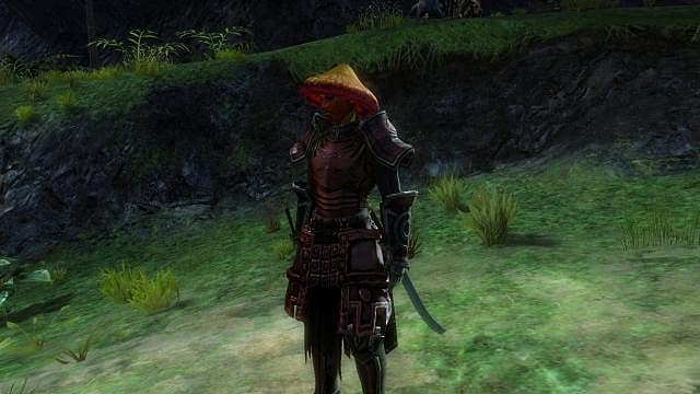 Zasarada Quot The Salad Samurai Quot Guild Wars 2