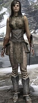 ESO: Recomended Starting Build for Templar