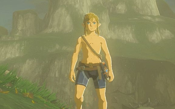 In Breath of the Wild's Eventide Island side quest, Link finds himself without his weapons and armor