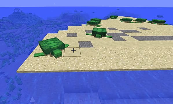 A Minecraft turtle hanging out on a sandy beach