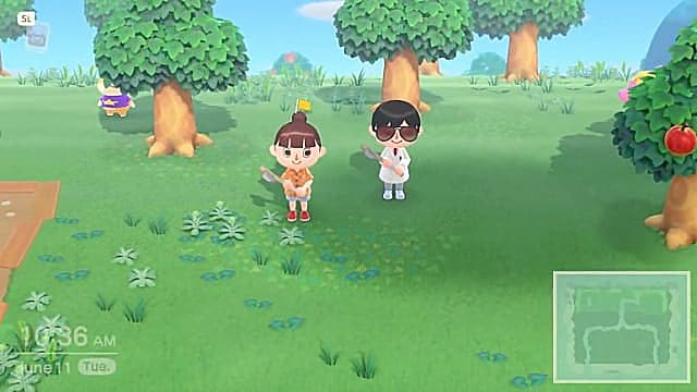 Co-op in Animal Crossing New Horizons is simple, though everyone has to follow the leader.