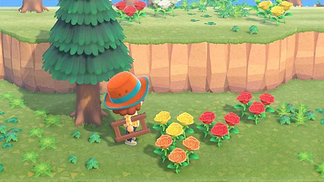 Animal Crossing New Horizons Flower Breeding Guide