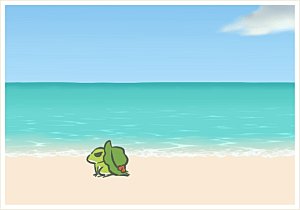 Frog walking down beach