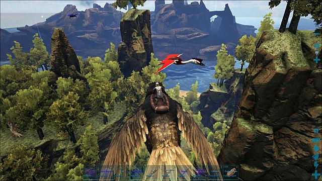 birdflying-85eb3.jpg