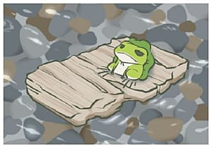 Frog riding down stream on piece of carboard