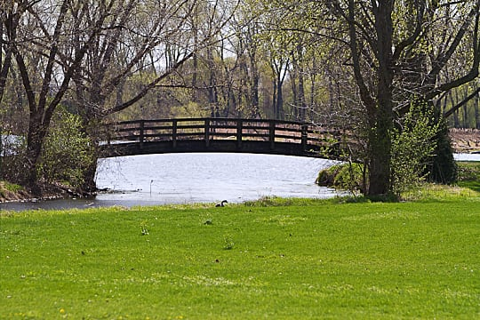 bridge, park, grass, trees, nature
