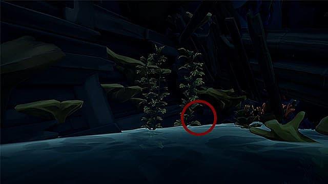 A journal hidden underneath pirate ship wreckage.