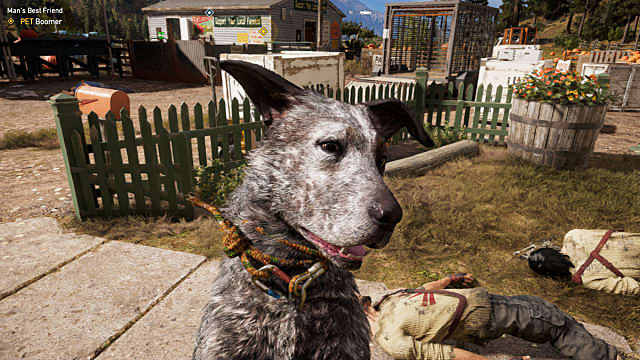Close-up of Boomer the dog in Far Cry 5