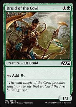 druid-cowl-c76d5.jpg
