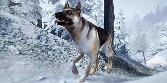 fable-iii-dog-breed-dlc-60c75.jpg