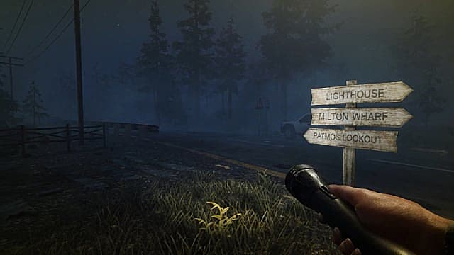 Player character standing in a grass by a road and signpost at night, holding a flashlight.