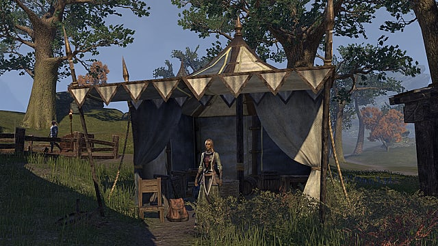 How to Make Gold in Elder Scrolls Online | Elder Scrolls Online