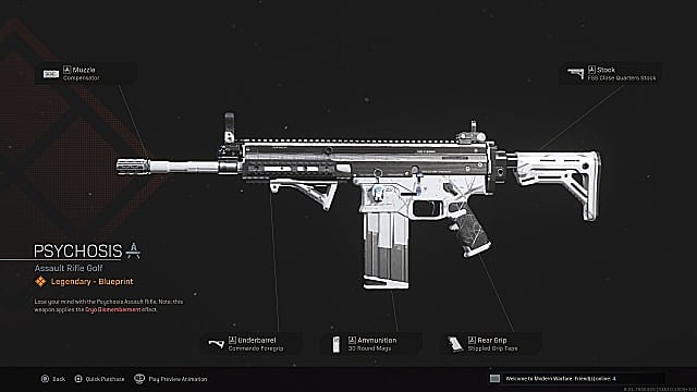 The Psychosis assault rifle is one of the guns that uses Cryo Dismemberment in Warzone.
