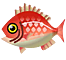 red-snapper-8b164.png