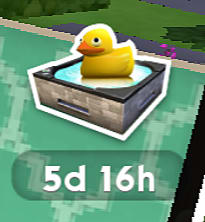 A rubber ducky indicating ducky bucks