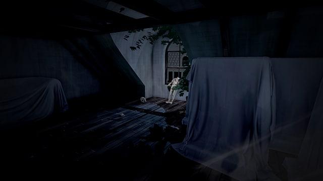 screenshot-attic-0e079.png