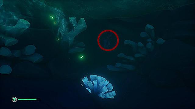 A lever hidden under dark water near several pieces of coral.