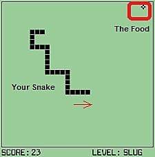 snake-d97ae.jpg