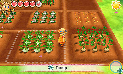 Raising Winning Crops and Animals Guide - Story of Seasons: Trio of Towns Harvest Festival