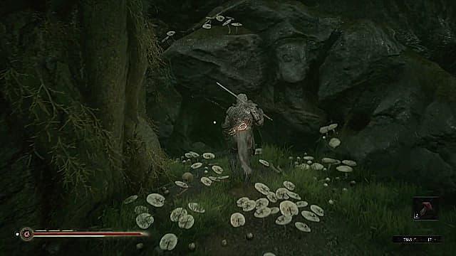 Solomon walking up to a hidden entrance to the Strange Altar.