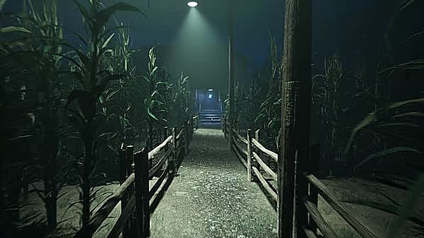 First-person view walking along path through cornfield at night.