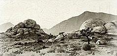 treasure-hunt-gtao-photo-senoranationalparkrocks-bc07c.png