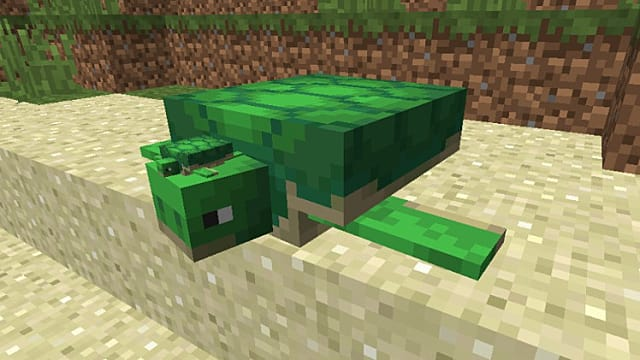 Craft Turtle Minecraft