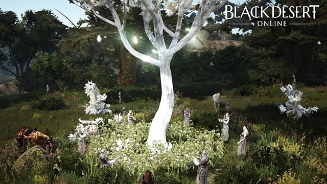 Yes, There's A Black Desert Online NSFW Nude Mod -- Here's