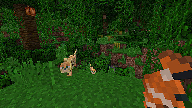 Minecraft Bedrock Edition in the Jungle about to feed an Ocelot a Fish