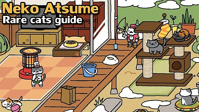neko atsume rare cats guide collect those cats neko atsume. Black Bedroom Furniture Sets. Home Design Ideas