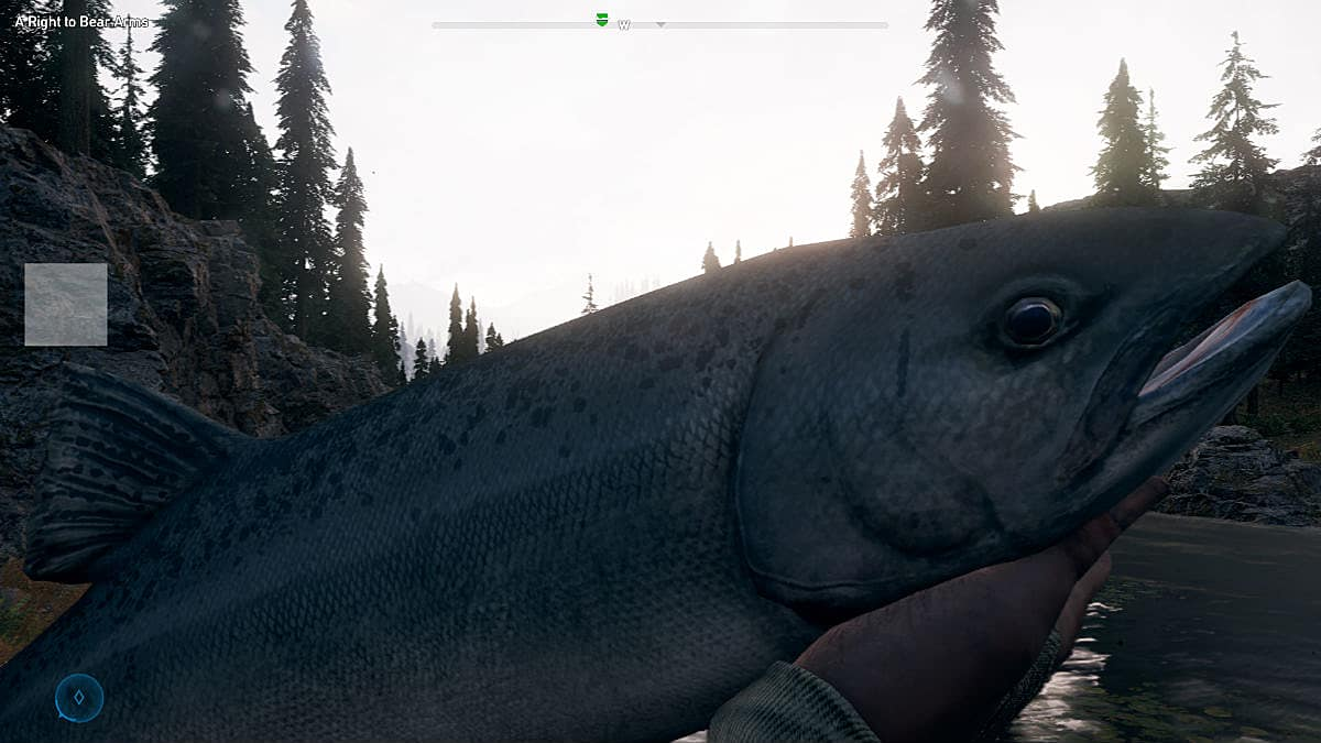 Far Cry 5 Johns Region Pictures To Pin On Pinterest: Far Cry 5 Fishing Guide -- Finding Poles, Best Fishing