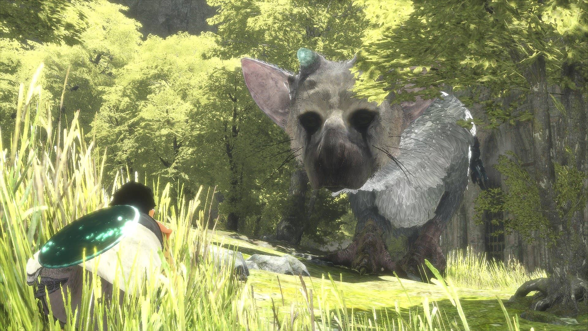 The Last Guardian S Trico Isn T Trying To Be A Jerk The Last