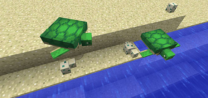How to Breed Turtles in Minecraft | Minecraft
