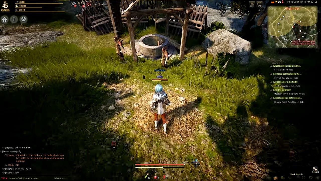 Black Desert Online: system requirements. Will it go or not