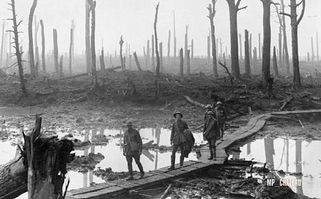 Battle of passchendaele château wood belgium battlefield 1