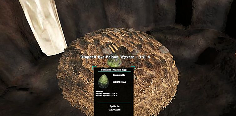 Stealing and Hatching Wyvern Eggs in ARK's Scorched Earth DLC ...