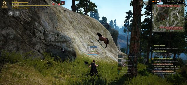 Black Desert Online Horse Locations