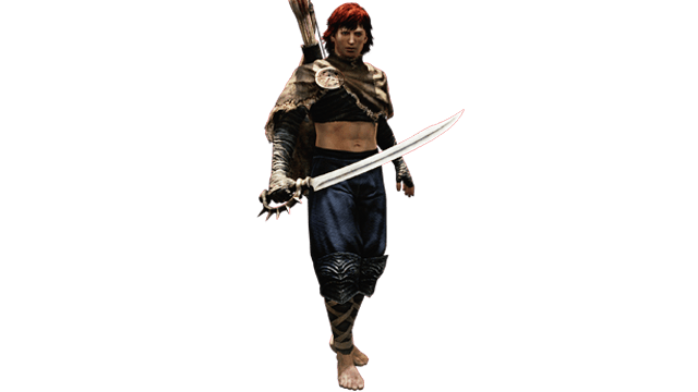 Dragon's Dogma Assassin