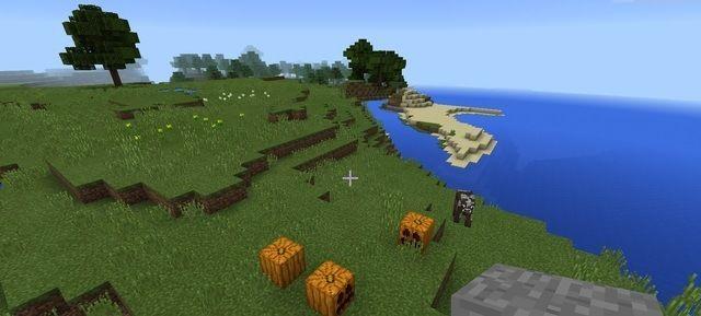 Minecraft coastline pumpkin