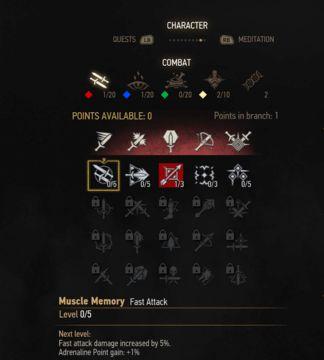 Witcher  Alchemy Fast Attack Build