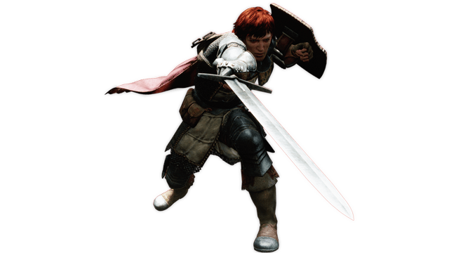 Dragon's Dogma Fighter
