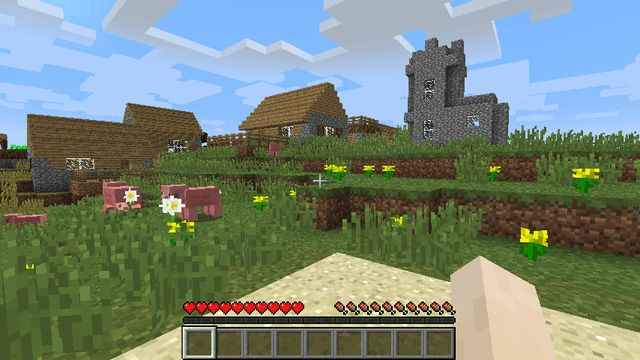 Spawn Right in Front of a Village seed will wheaton
