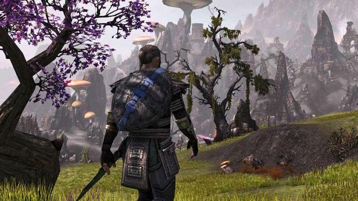 Bethesda Delays The Elder Scrolls Online Console Versions | Elder