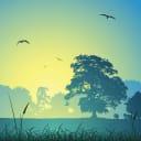 Фотообои флизелиновые «Пробуждение» 200х200 см