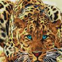 Алмазная мозаика Белоснежка Леопард 088-ST-S